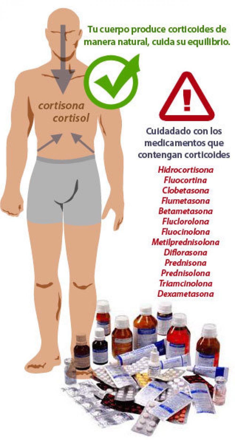 Corticoides cortisol y cortisona qu son y c mo afectan for Como se cocinan los percebes