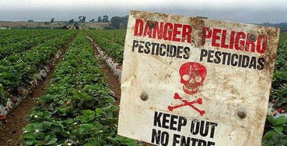 Toxicidad de los pesticidas en humanos